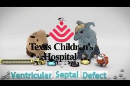 Embedded thumbnail for Ventricular Septal Defect: Surgical Closure
